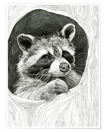 Poster  Raccoon In A Hollow Tree Sketch - Ashley Verkamp