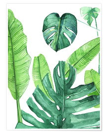 Poster  Feuilles tropicales - Rongrong DeVoe