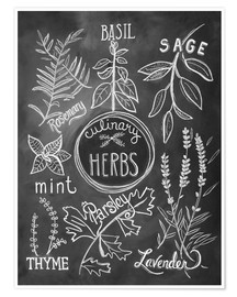 Poster  Herbes aromatiques (anglais) - Lily & Val