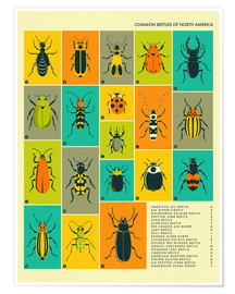 Poster  Bugs in North America - Jazzberry Blue