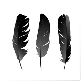 Poster  Trois plumes