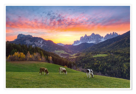 Poster View into the Villnöss Valley in South Tyrol at sunrise