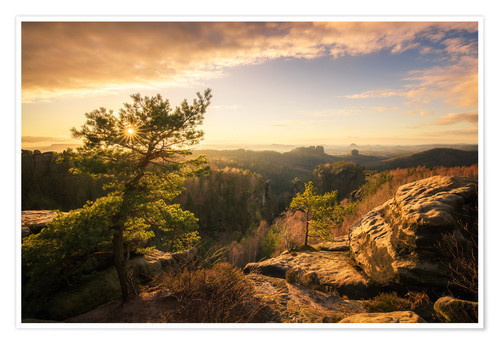 Poster Saxony Switzerland - Sunset (Carolafelsen)