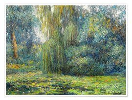Poster  Nénuphars - Blanche Hoschede-Monet