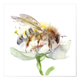 Poster  Abeille - Verbrugge Watercolor