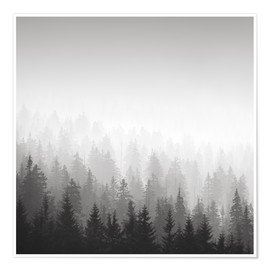 Poster Forest in fog
