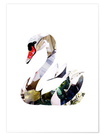 Poster  Swan against white background